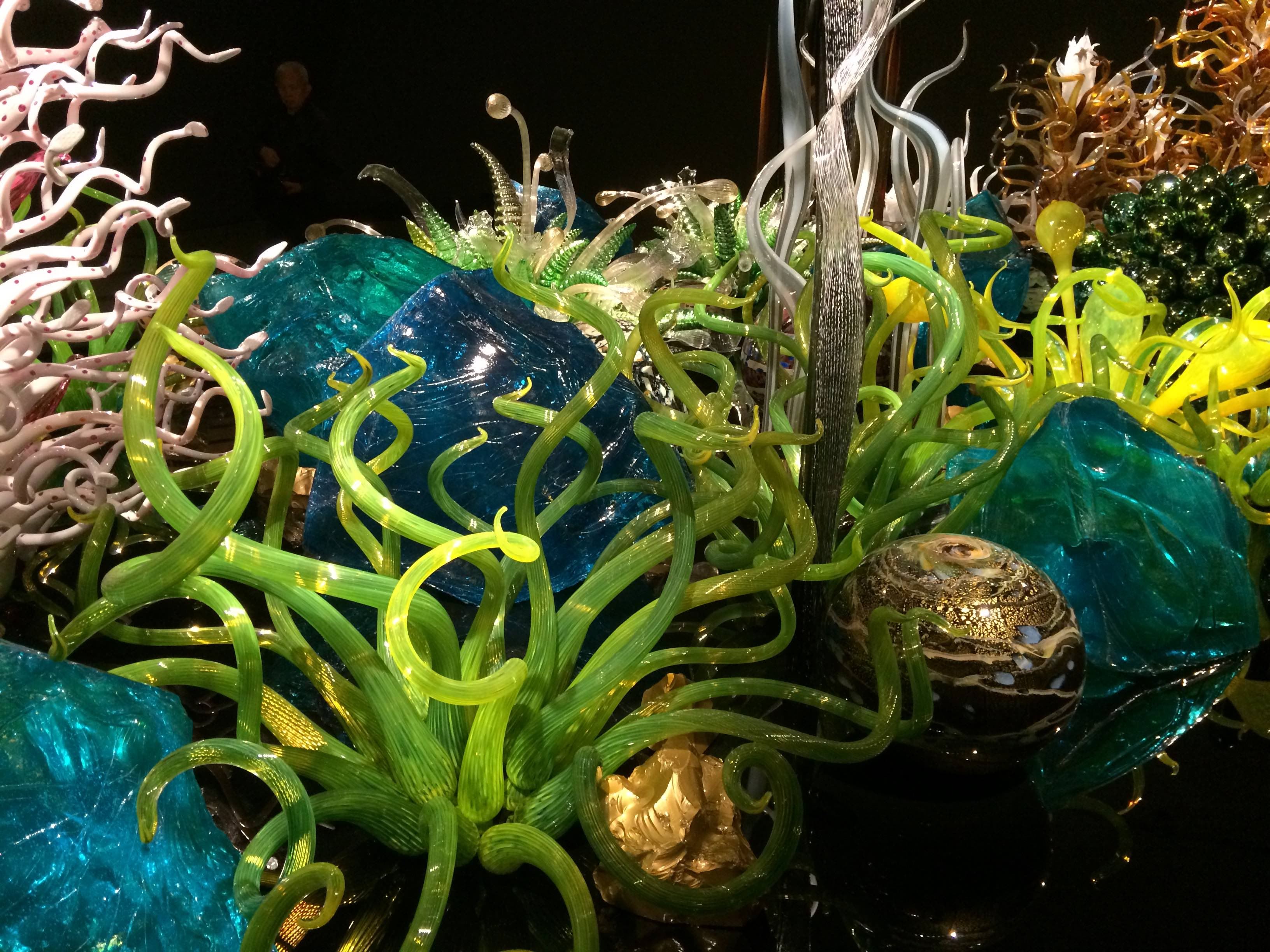 blown glass chihuly royal ontario museum