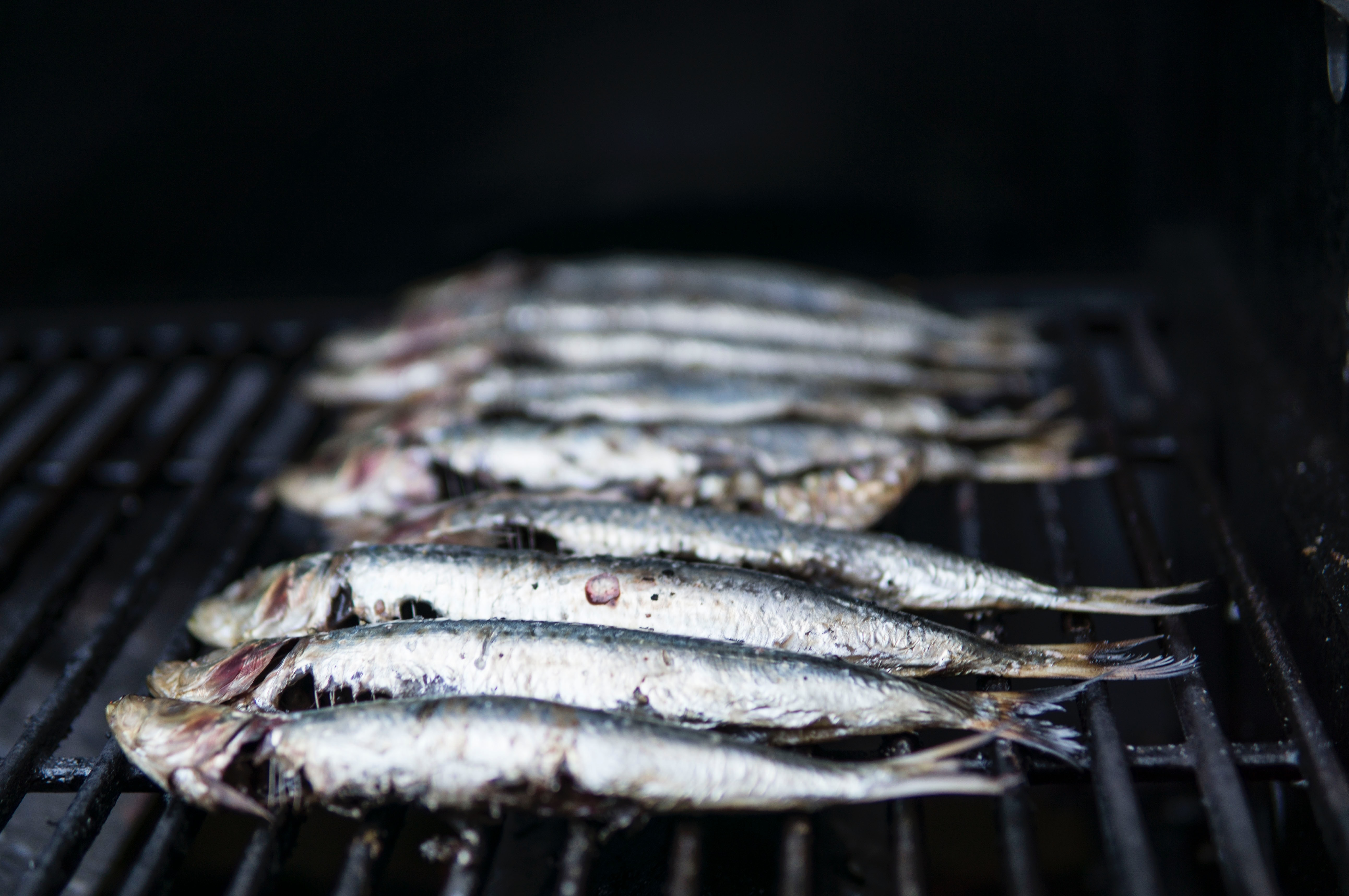 What to eat in Lisbon - sardines