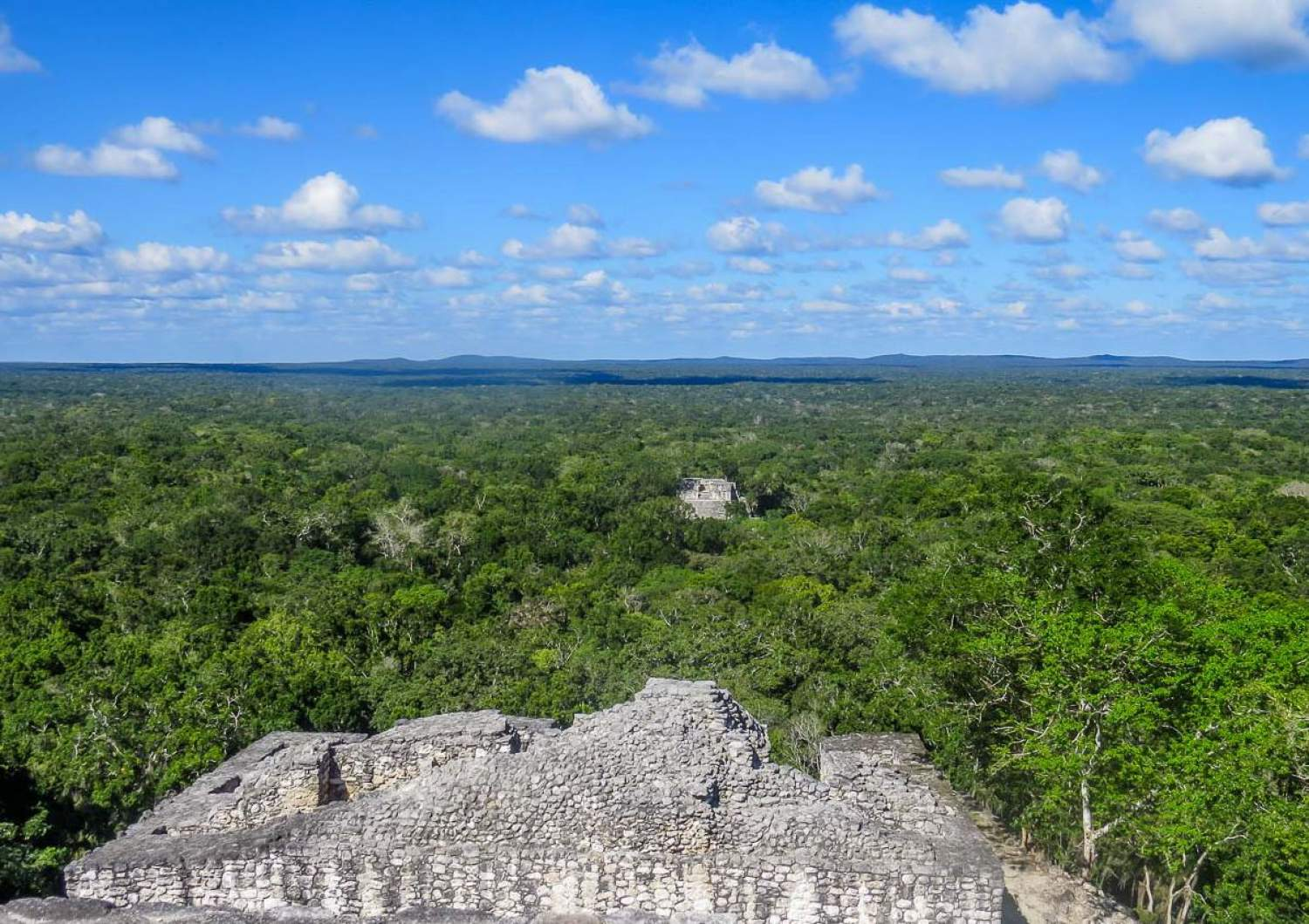 View from the top Mayan temple of Calakmul