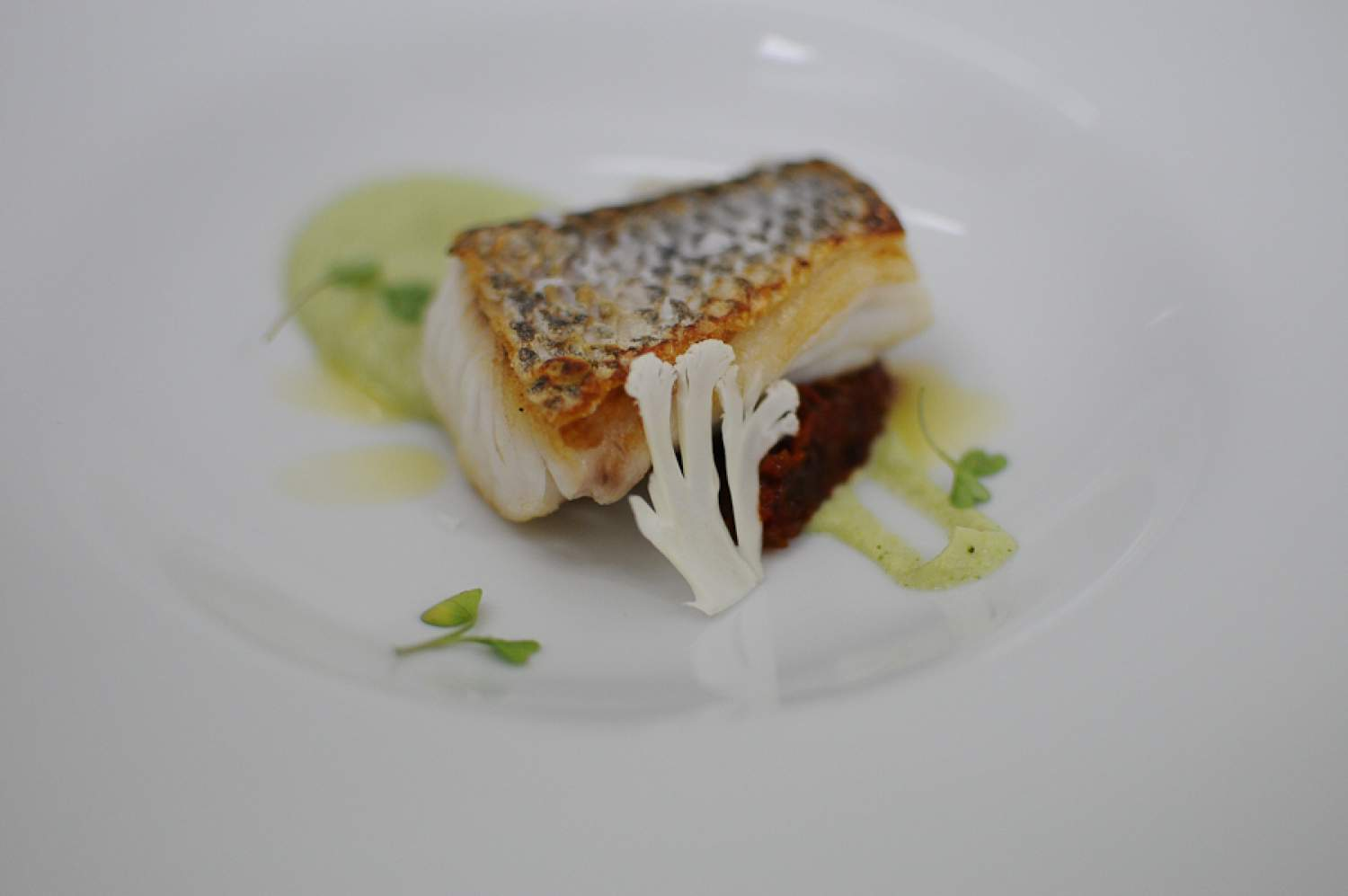 Plate at Passion restaurant by Martin Berasatgui