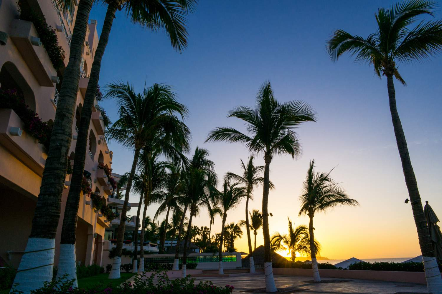 5 Things You Need To Know About Los Cabos Experience Transat