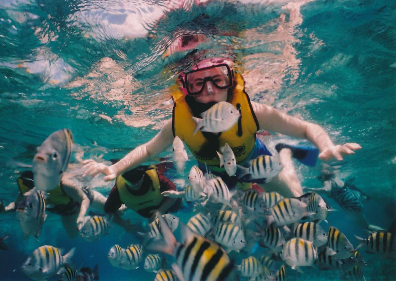 Reef snorkelling at Xel Ha Park