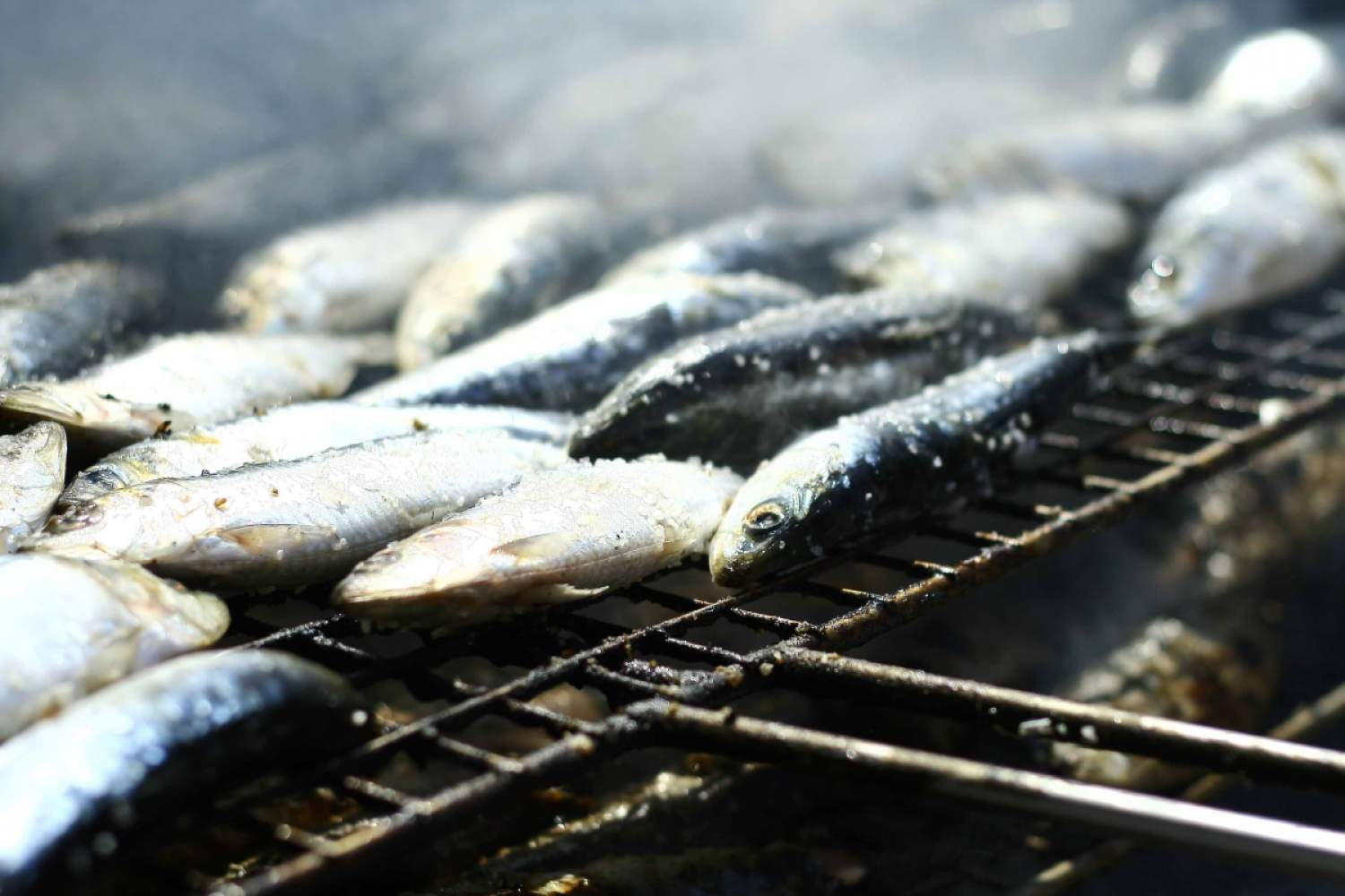 Sardines on the Barbecue in Lisbon, Portugal
