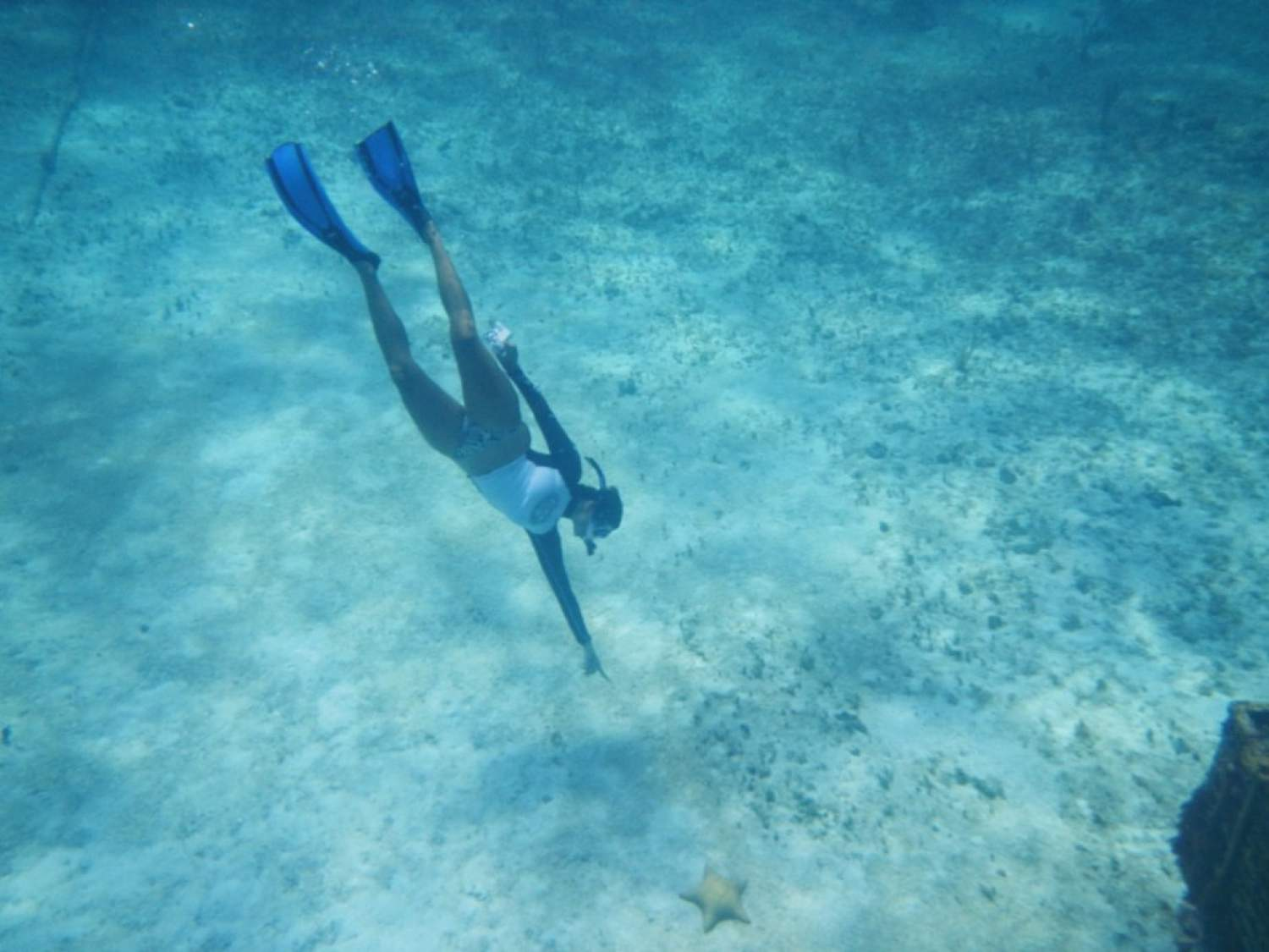 Snorkeling around Cozumel
