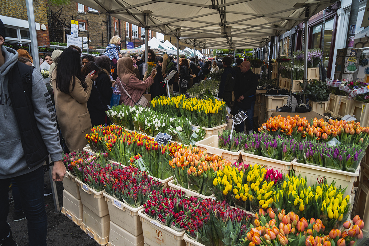 Columbia Road Flower Market: A perfect Sunday in London's East End