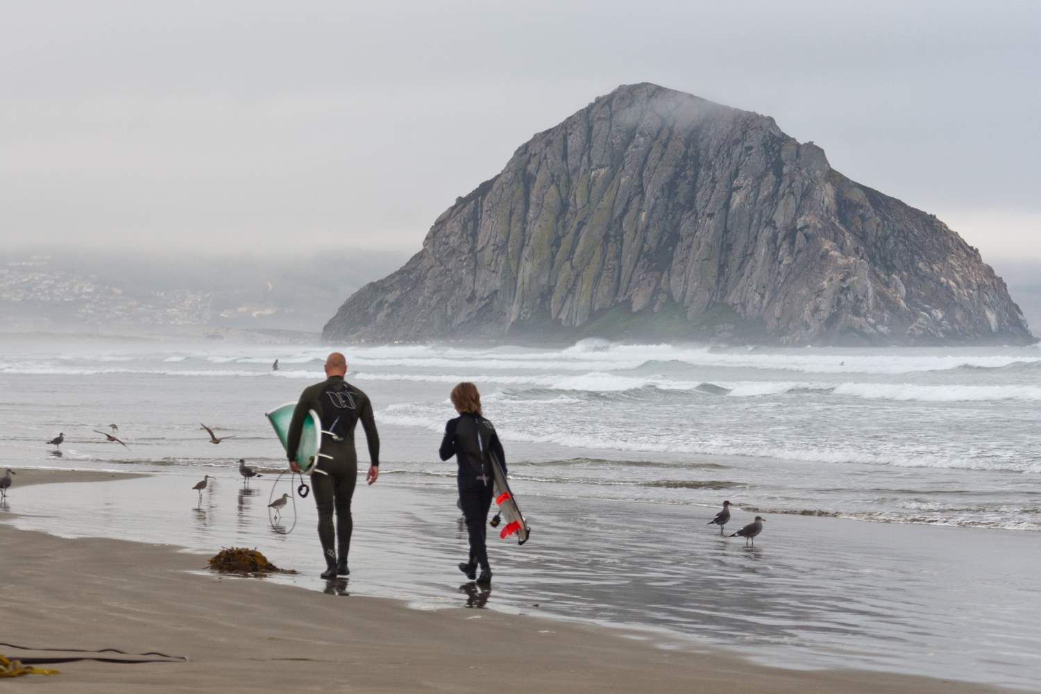 Surfers in wetsuit