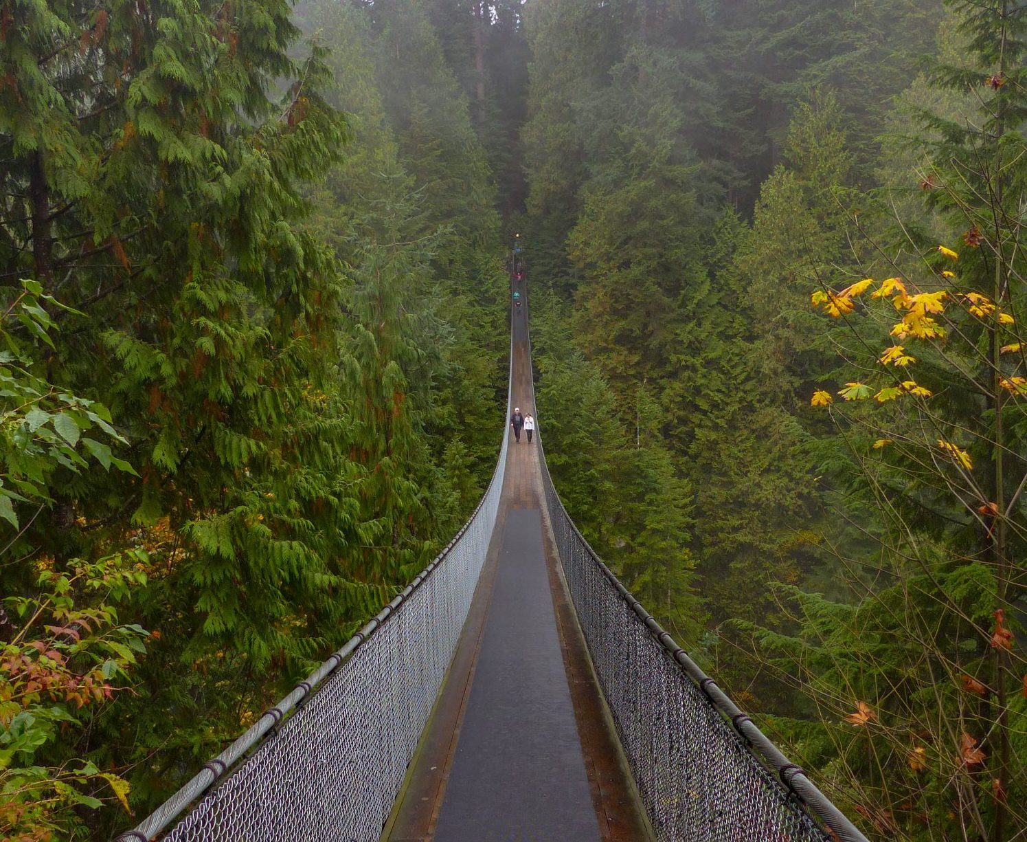 Capilano Suspension Bridge - Vancouver un autumn