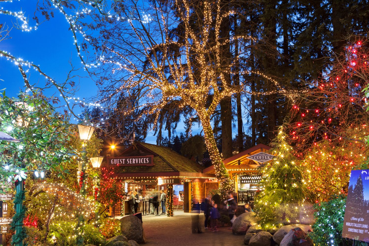 Capilano Suspension Bridge Park - How to spend Holidays in Vancouver