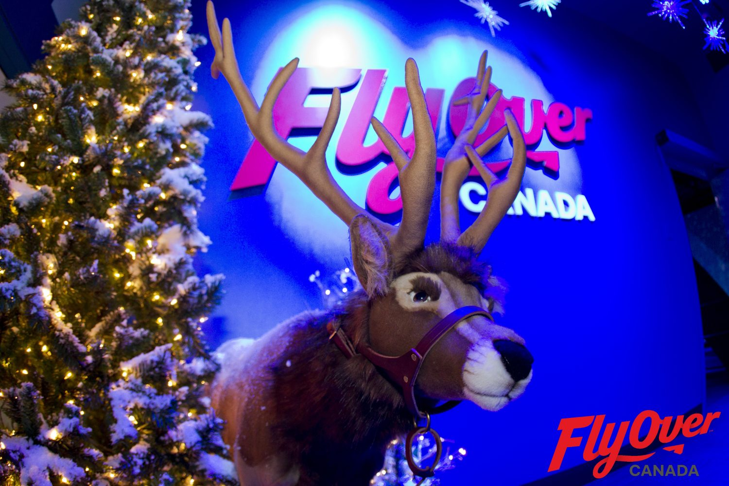 Christmas Spirit at FlyOver- How to spend Holidays in Vancouver
