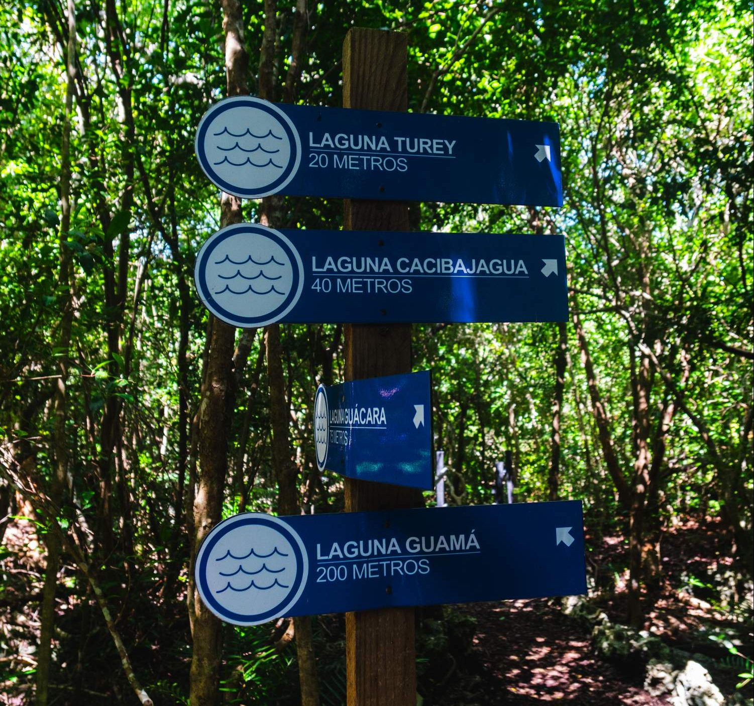 Directions to lagunas at the Indigenous Eyes Ecological Park and Reserve in Dominican Republic