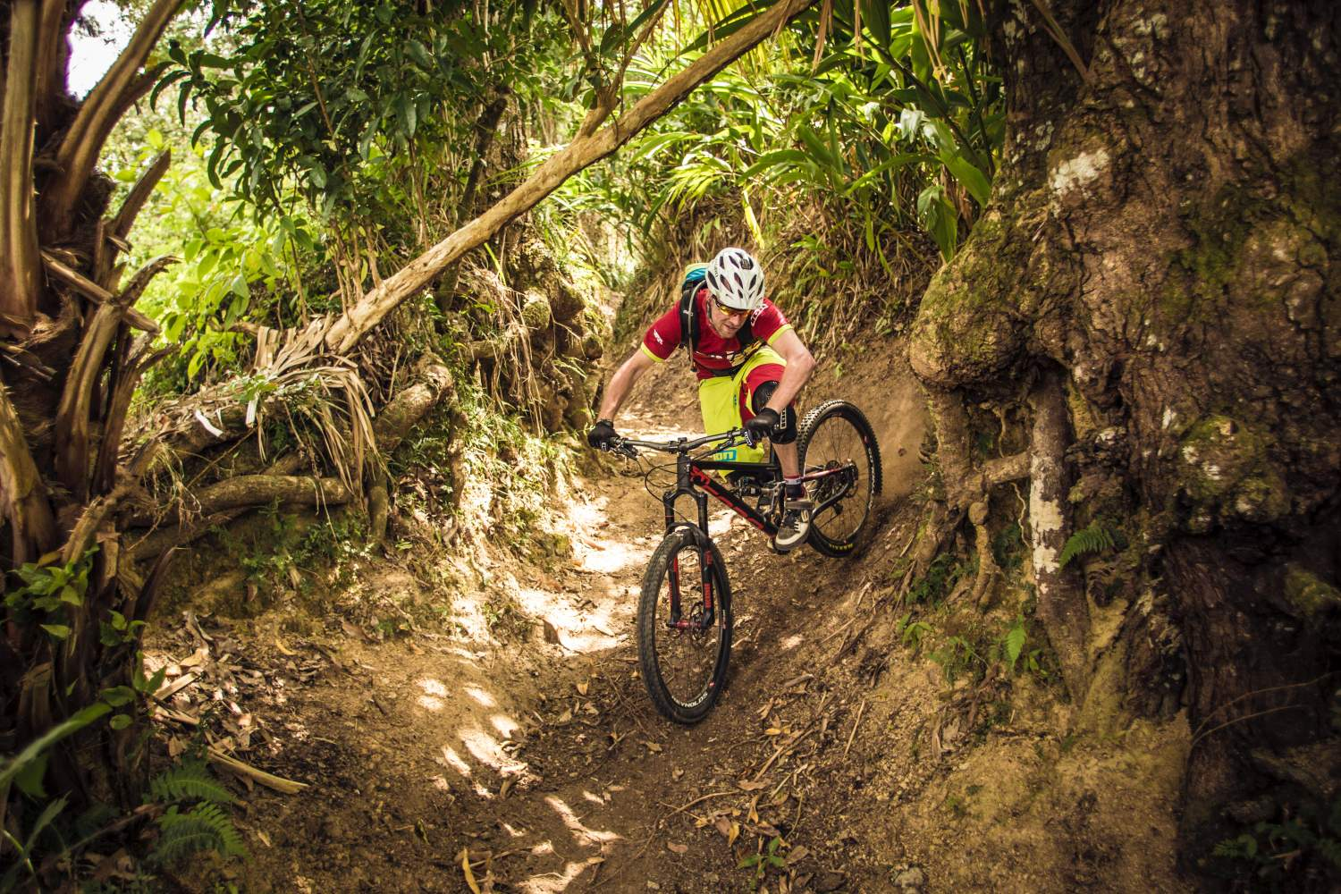 Mountain bike downhill in Jamaica