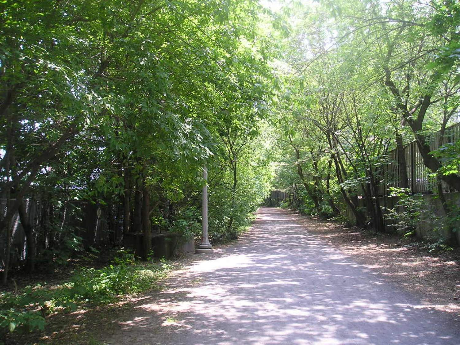 Park trail in Toronto