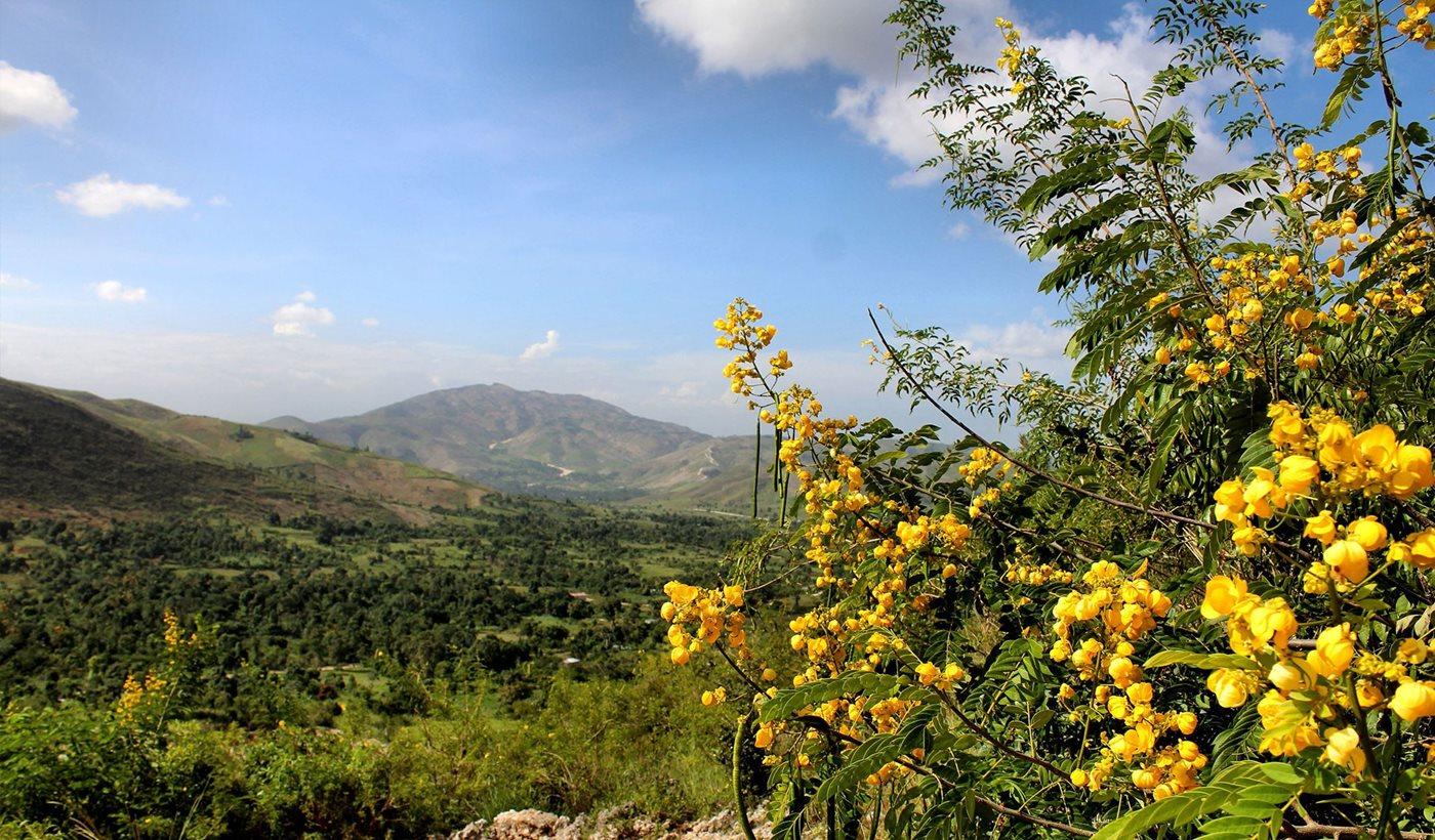 famille et amis en haiti air transat