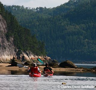 Sea kayaking - Saguenay