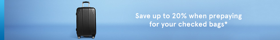 Save up to 20% when prepaying for your checked bags.
